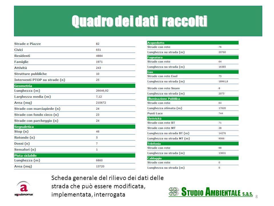 Quadro dei dati raccolti Quadro dei dati raccolti Scheda generale del rilievo dei dati delle strada che può essere modificata, implementata, interroga