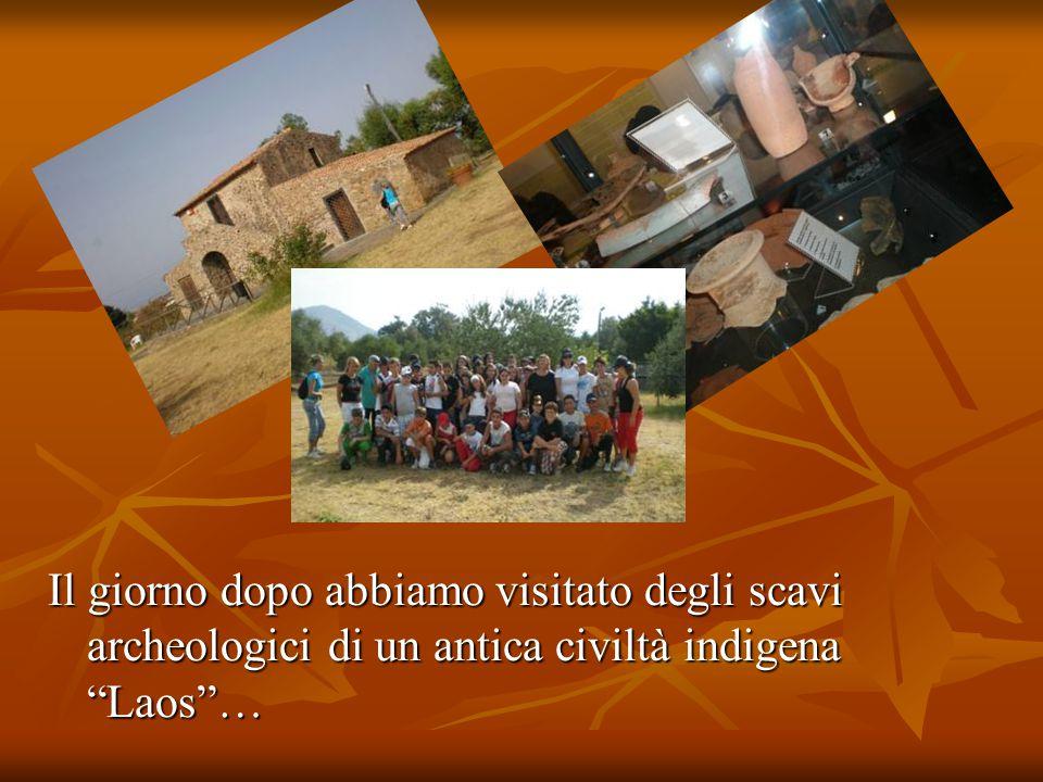 Questa presentazione è stata realizzata da: Francesca Guido Marta Magnifico Rosalidia Salerno