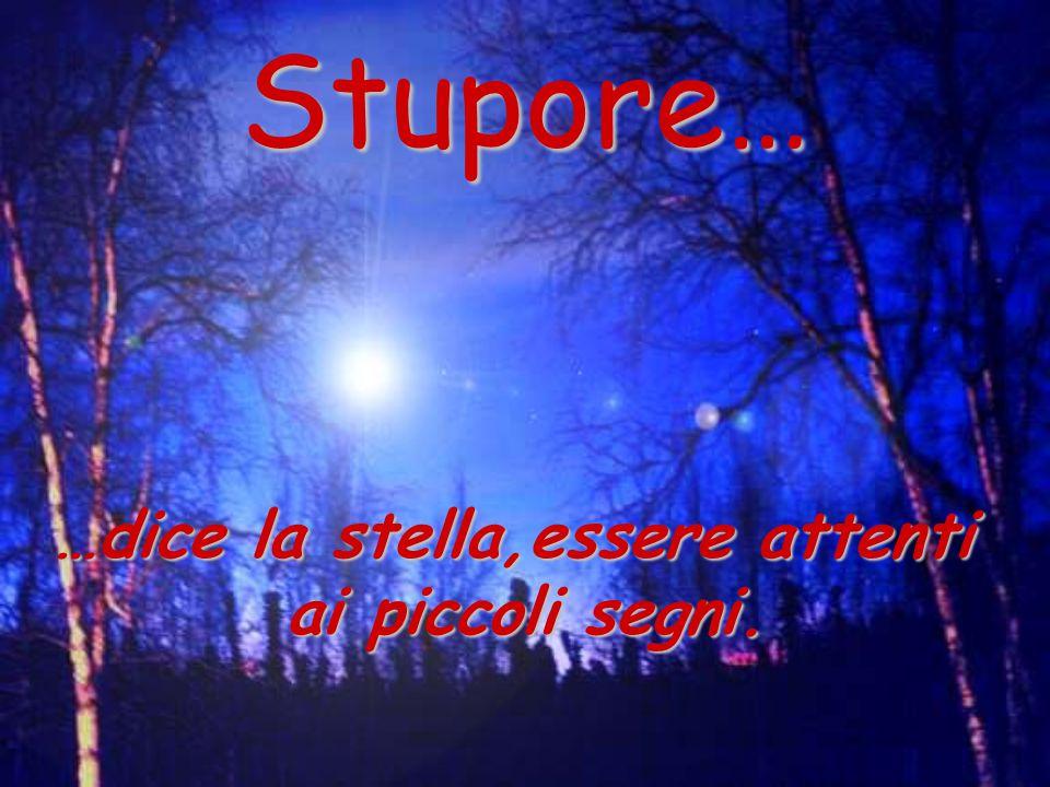 Stupore… …dice la stella,essere attenti ai piccoli segni.