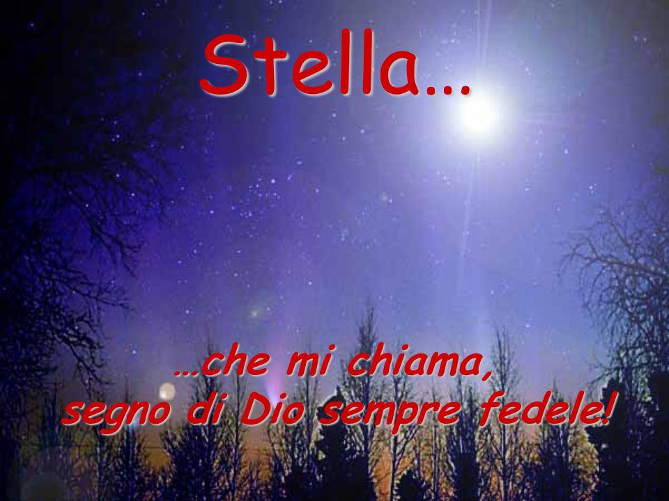 Stella… …che mi chiama, segno di Dio sempre fedele!
