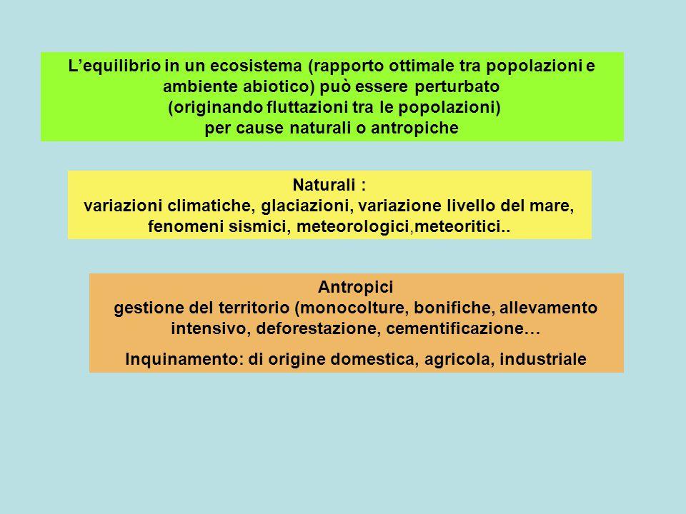 L'equilibrio in un ecosistema (rapporto ottimale tra popolazioni e ambiente abiotico) può essere perturbato (originando fluttazioni tra le popolazioni