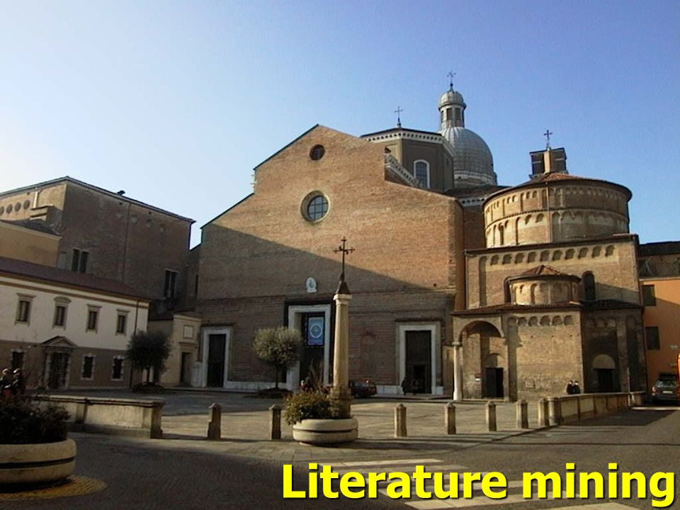 Literature mining