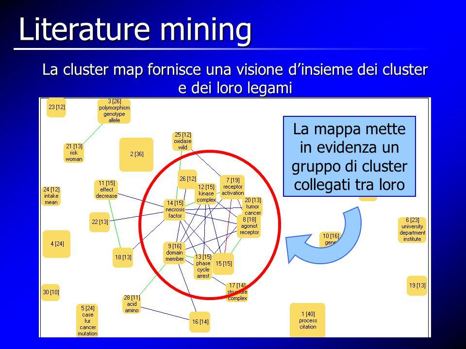 La cluster map fornisce una visione d'insieme dei cluster e dei loro legami La mappa mette in evidenza un gruppo di cluster collegati tra loro