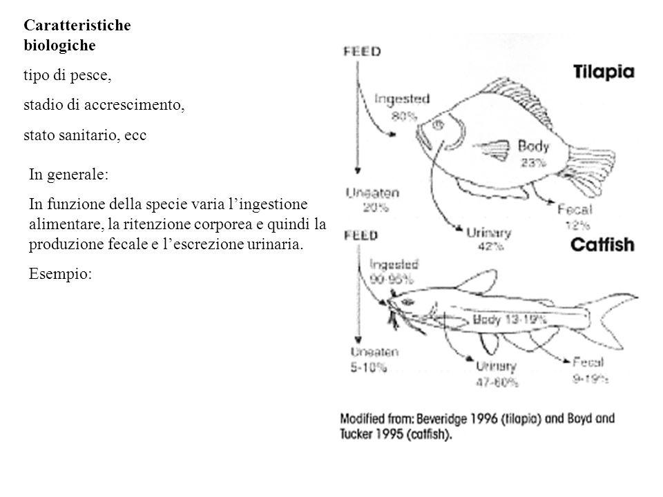 Caratteristiche biologiche tipo di pesce, stadio di accrescimento, stato sanitario, ecc In generale: In funzione della specie varia l'ingestione alime