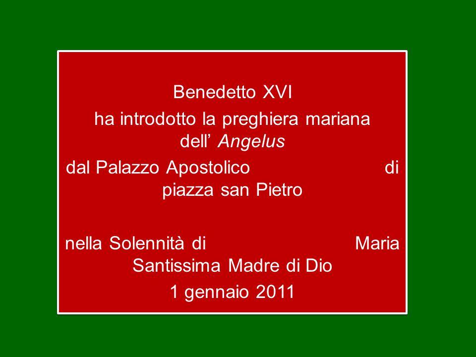 Benedetto XVI ha introdotto la preghiera mariana dell' Angelus dal Palazzo Apostolico di piazza san Pietro nella Solennità di Maria Santissima Madre di Dio 1 gennaio 2011 Benedetto XVI ha introdotto la preghiera mariana dell' Angelus dal Palazzo Apostolico di piazza san Pietro nella Solennità di Maria Santissima Madre di Dio 1 gennaio 2011