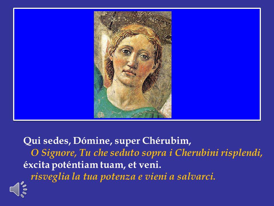 Ogni cristiano, in forza del Battesimo, ha ricevuto la dignità profetica: possa ciascuno riscoprirla e alimentarla, con un assiduo ascolto della Parola divina.