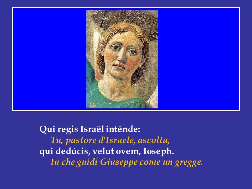 Qui regis Israël inténde: Tu, pastore d Israele, ascolta, qui dedúcis, velut ovem, Ioseph.
