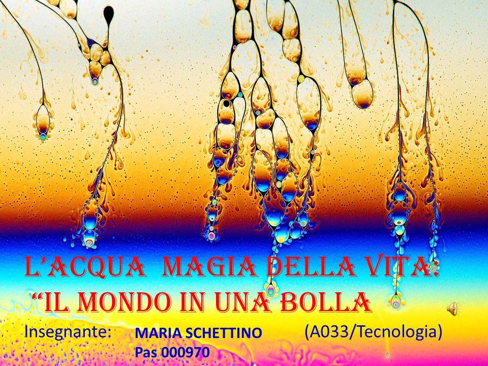 """""""STORIA"""" Il mondo in una Bolla…. """"TECNOLOGIA"""" """"BIOLOGIA"""" """"STORIA DELL'ARTE"""" """"ITALIANO"""" """"MUSICA"""" """"ESTETICA"""" """"GEOGRAFIA """" """"ZOOLOGIA"""" """"MATEMATICA E GEOME"""