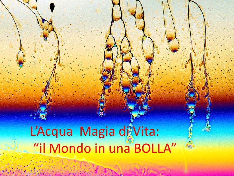 """L'Acqua Magia di Vita: """"il Mondo in una BOLLA"""""""