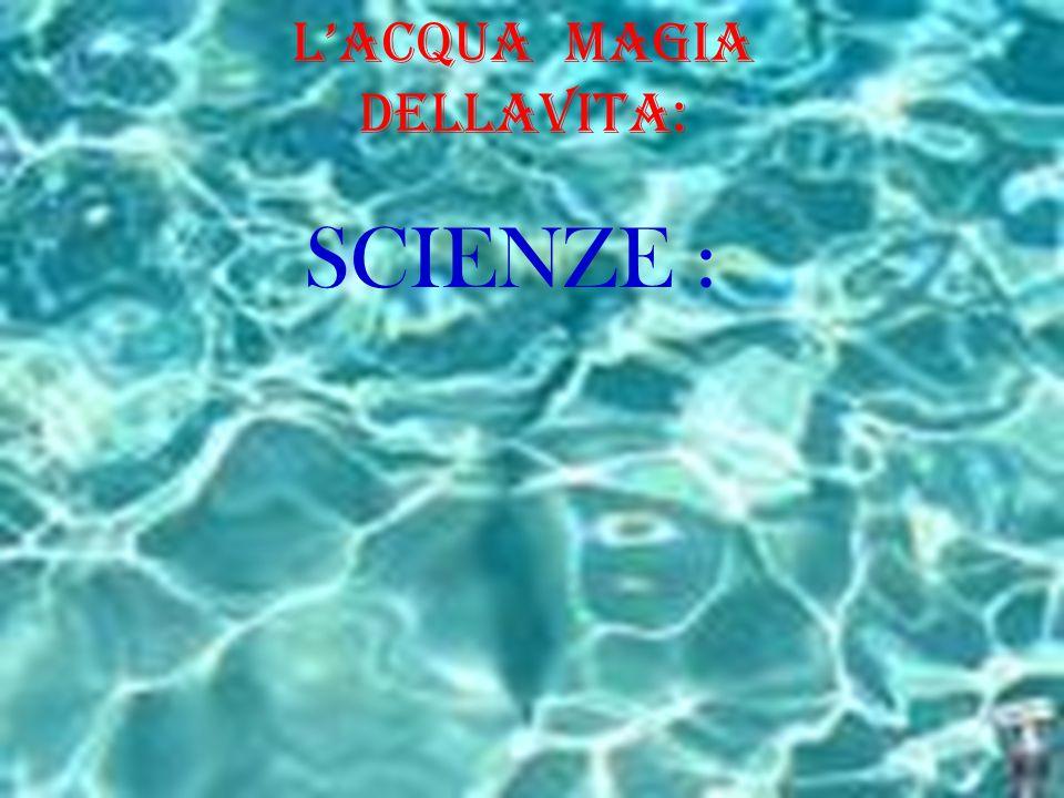 L'Acqua Magia dELLAVita: SCIENZE :