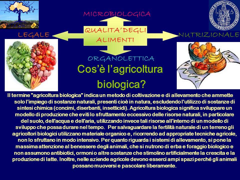 Cos'è l'agricoltura biologica? Il termine
