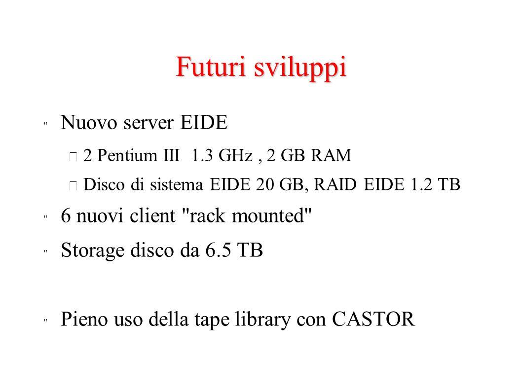 Futuri sviluppi Nuovo server EIDE – 2 Pentium III 1.3 GHz, 2 GB RAM – Disco di sistema EIDE 20 GB, RAID EIDE 1.2 TB 6 nuovi client rack mounted Storage disco da 6.5 TB Pieno uso della tape library con CASTOR