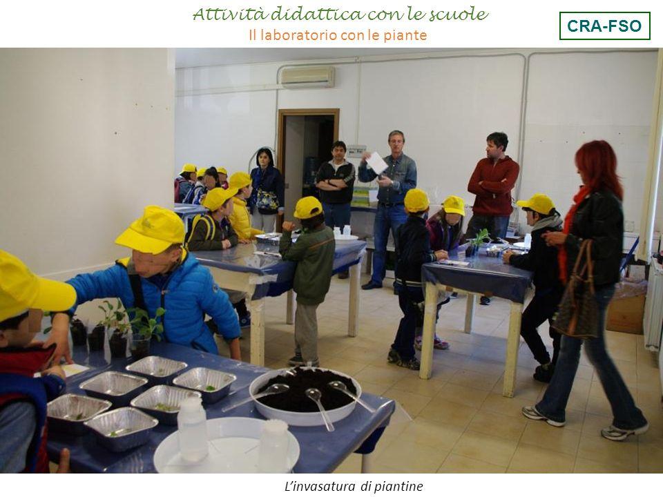 L'invasatura di piantine Attività didattica con le scuole Il laboratorio con le piante CRA-FSO
