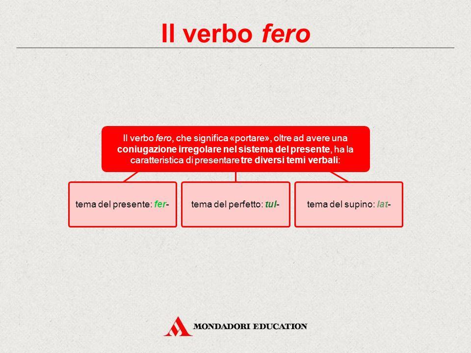 Il verbo fio Verifica immediata Trascina le singole forme in corrispondenza della persona, del numero e del tempo corretti, ricostruendo l'indicativo presente e perfetto di fio, «sono fatto».