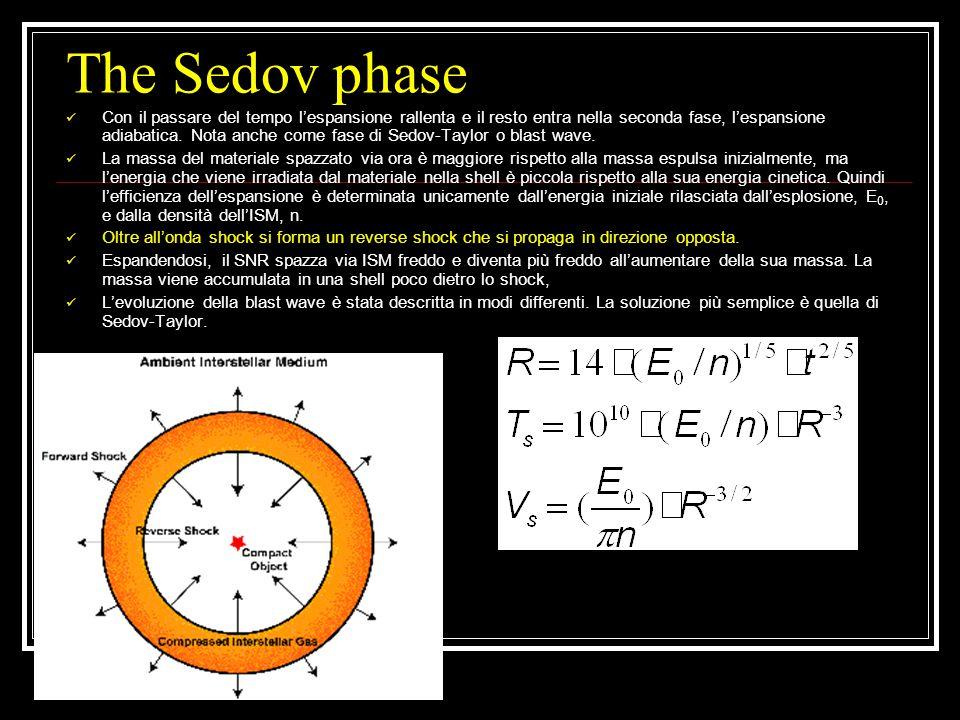 The Sedov phase Con il passare del tempo l'espansione rallenta e il resto entra nella seconda fase, l'espansione adiabatica.