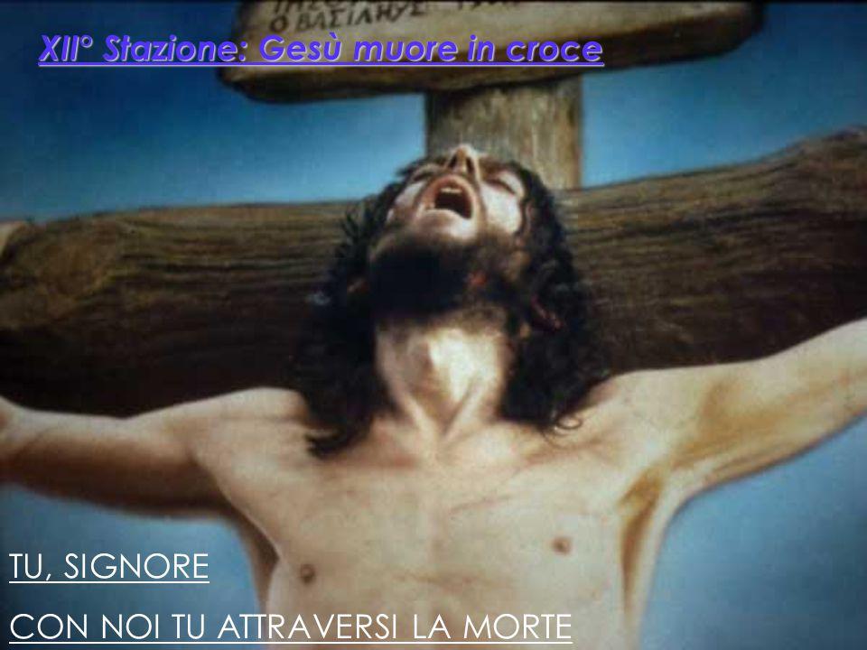 CHI E' COSTUI, IMMERSO NEL DOLORE? NESSUNO HA ORMAI PIETA' DI LUI Fu sepolto tra i malfattori, eppure era giusto E Dio l'ha schiacciato nel dolore Per