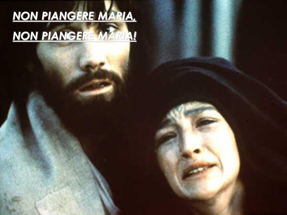 NON PIANGERE MARIA, NON PIANGERE MARIA!