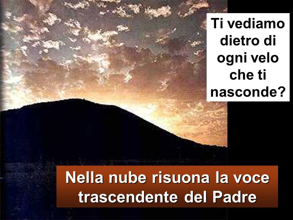 Venne una nube che li coprì con la sua ombra e dalla nube uscì una voce: «Questi è il Figlio mio, l'amato: ascoltatelo!».