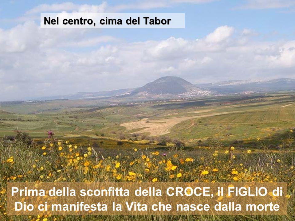 Nel centro, cima del Tabor Prima della sconfitta della CROCE, il FIGLIO di Dio ci manifesta la Vita che nasce dalla morte