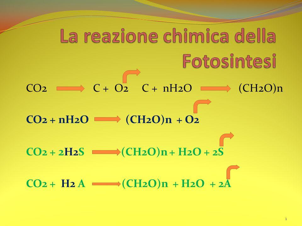 CO2 C + O2 C + nH2O (CH2O)n CO2 + nH2O (CH2O)n + O2 CO2 + 2 H2S (CH2O)n + H2O + 2S CO2 + H2 A (CH2O)n + H2O + 2A 1