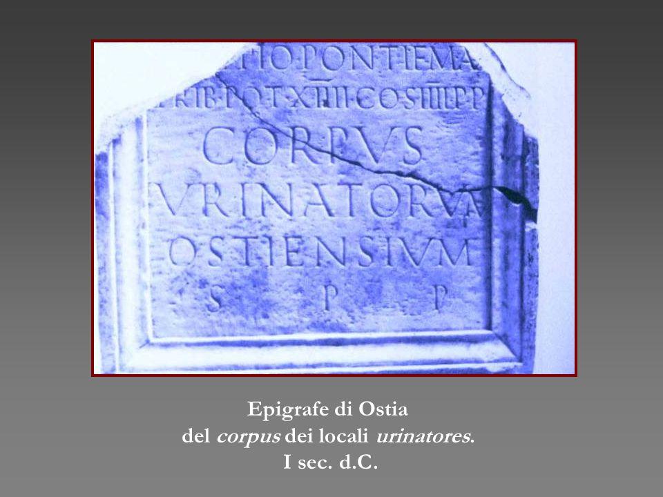 Epigrafe di Ostia del corpus dei locali urinatores. I sec. d.C.