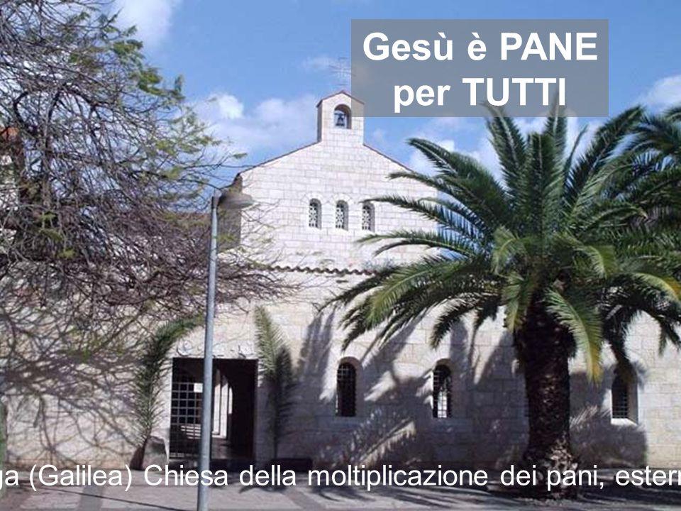 Gesù è PANE per TUTTI Tabga (Galilea) Chiesa della moltiplicazione dei pani, esterno