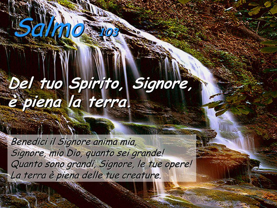 Salmo 103 Del tuo Spirito, Signore, è piena la terra.