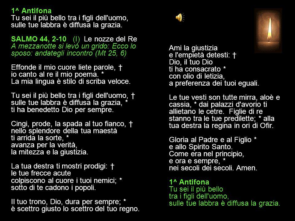 6 LUGLIO 2015 LUNEDÌ - II SETTIMANA DEL SALTERIO DEL T. O. VESPRI V. O Dio, vieni a salvarmi. R. Signore, vieni presto in mio aiuto. Gloria al Padre e