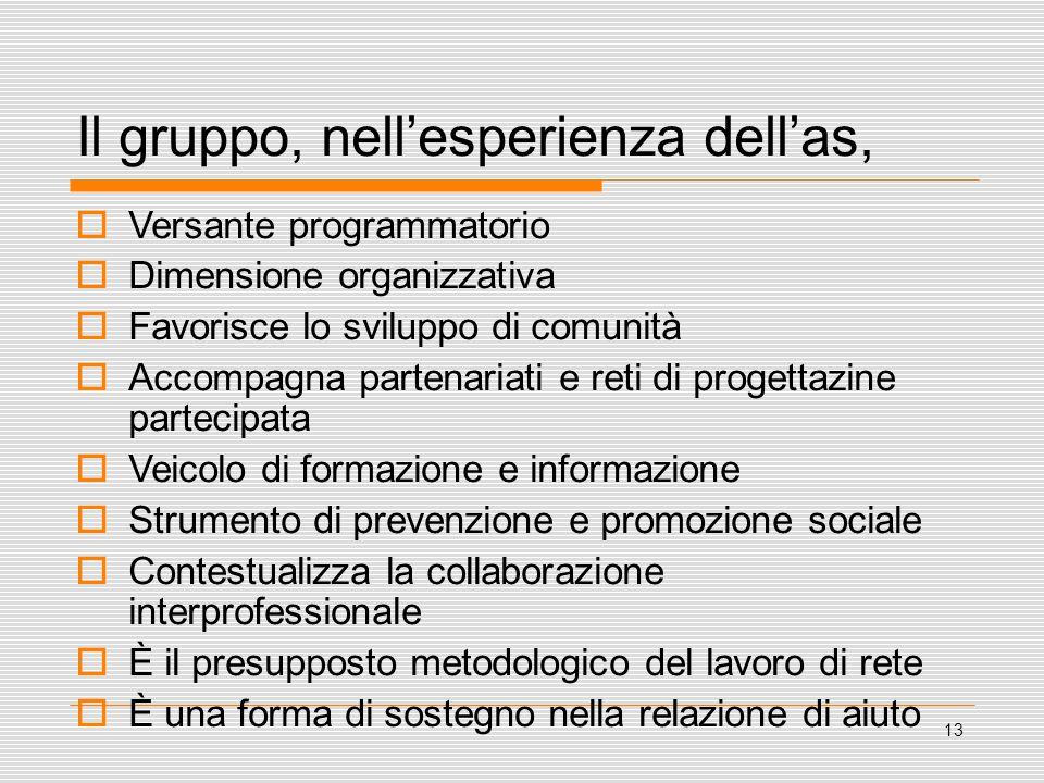 13 Il gruppo, nell'esperienza dell'as,  Versante programmatorio  Dimensione organizzativa  Favorisce lo sviluppo di comunità  Accompagna partenari