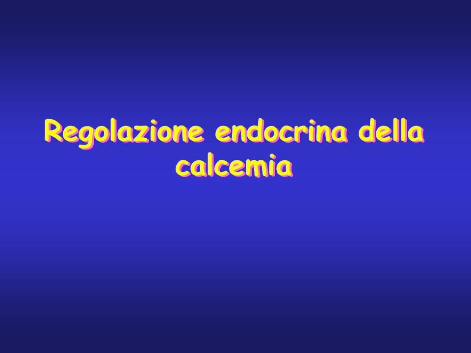ALTERAZIONI NEL RACHITISMO ALTERAZIONI OSSEE: aumento dell'attività osteoclastica, assottigliamento dell'osso che viene sostituito da tessuto osteoide non calcificato molto debole TETANIA quando il calcio osseo diventa scarso si abbassa la calcemia, che quando raggiunge i 7mg % induce i noti segni della tetania ed il bambino può morire per spasmo tetanico respiratorio TRATTAMENTO adeguato apporto di calcio e fosfato nella dieta oltre che somministrazione di vit.