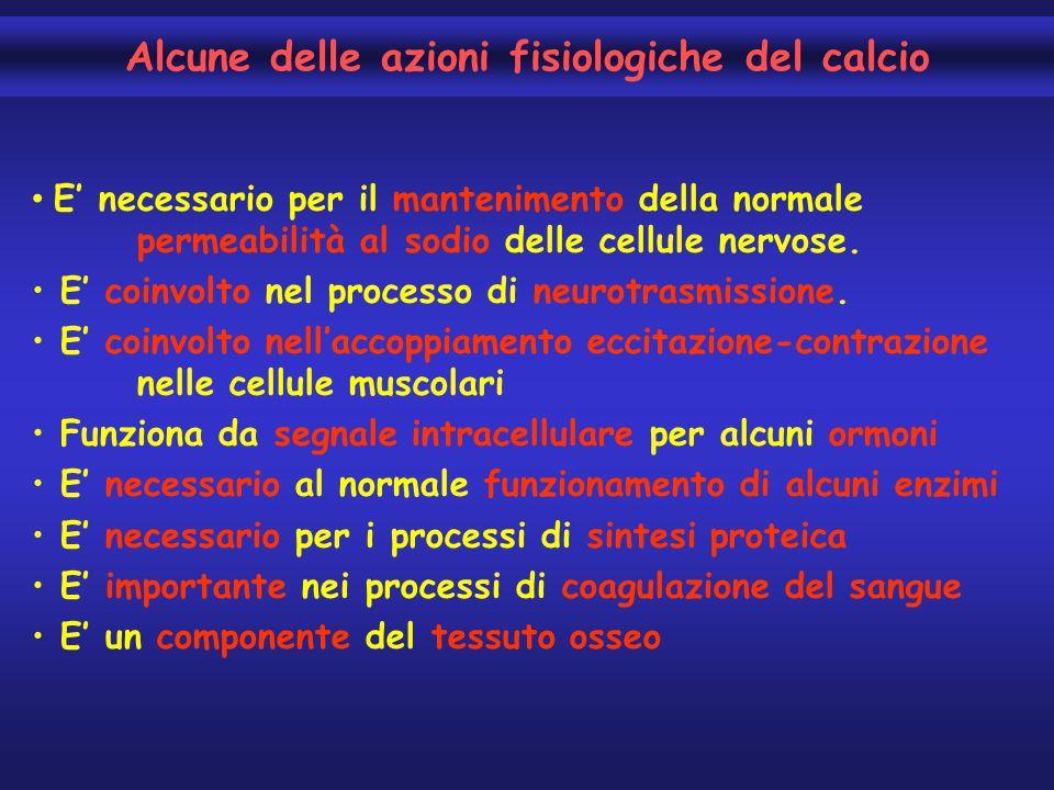 E' necessario per il mantenimento della normale permeabilità al sodio delle cellule nervose. E' coinvolto nel processo di neurotrasmissione. E' coinvo