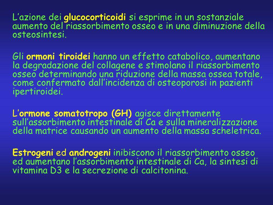 L'azione dei glucocorticoidi si esprime in un sostanziale aumento del riassorbimento osseo e in una diminuzione della osteosintesi. Gli ormoni tiroide