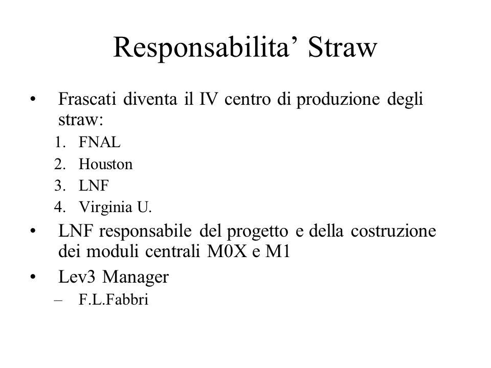 Responsabilita' Straw Frascati diventa il IV centro di produzione degli straw: 1.FNAL 2.Houston 3.LNF 4.Virginia U.