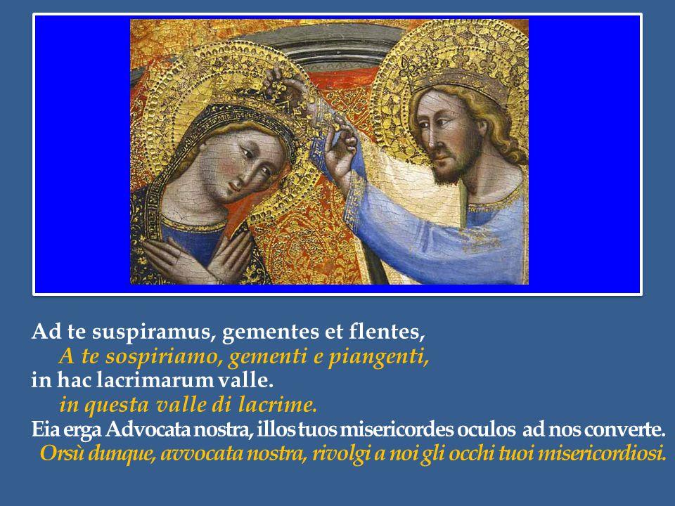 In particolare, l'icona della Vergine Maria Regina trova un significativo riscontro nel Vangelo odierno, là dove Gesù afferma: Ecco, vi sono ultimi che saranno primi, e vi sono primi che saranno ultimi (Lc 13,30).