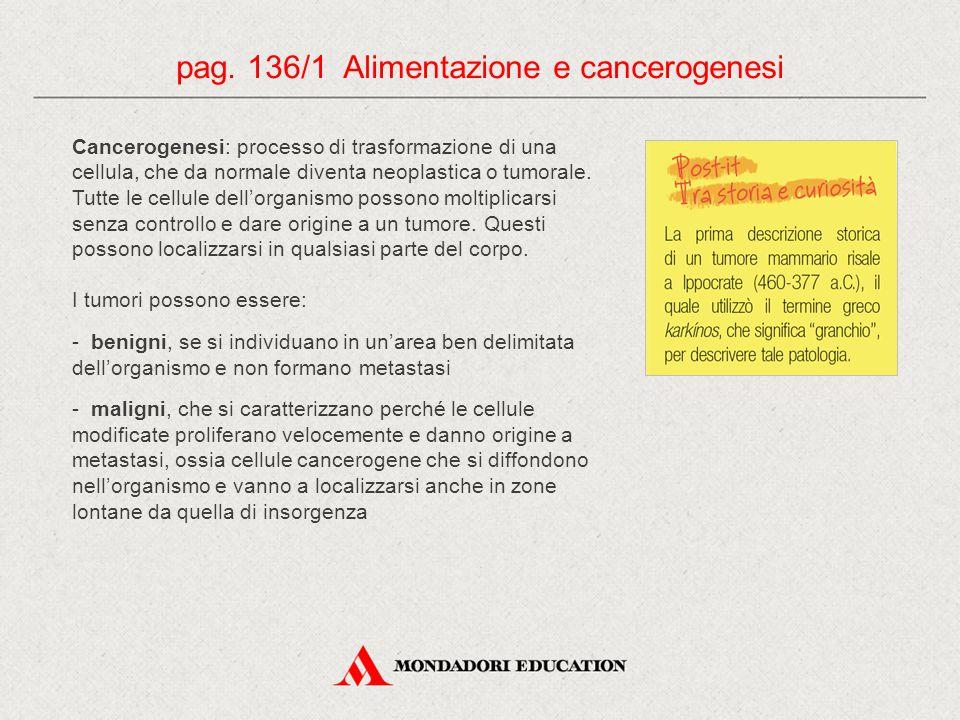 Cancerogenesi: processo di trasformazione di una cellula, che da normale diventa neoplastica o tumorale. Tutte le cellule dell'organismo possono molti