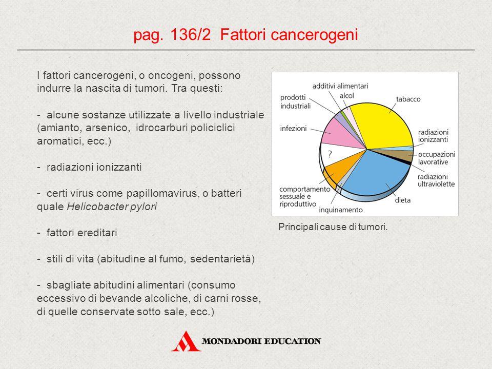 I fattori cancerogeni, o oncogeni, possono indurre la nascita di tumori. Tra questi: - alcune sostanze utilizzate a livello industriale (amianto, arse
