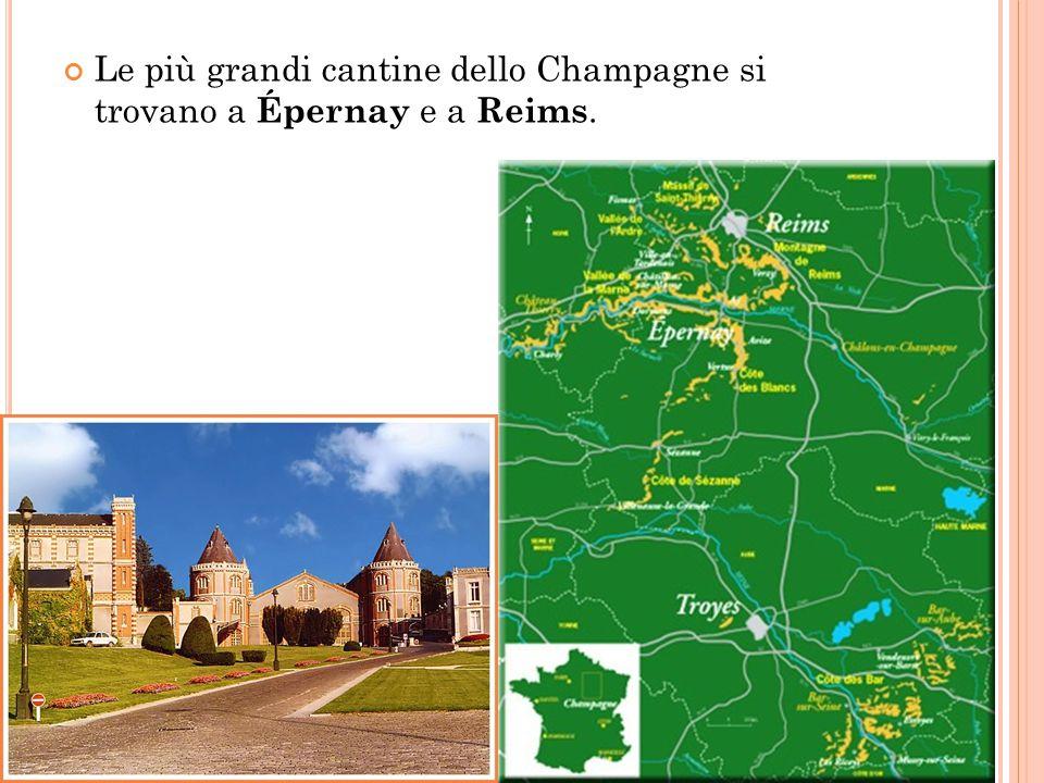 S TORIA Lo champagne è uno dei pochi vini ai quali sia stato attribuito un inventore, l abate benedettino Dom Pierre Pérignon, anche se esistono varie versioni sulla sua origine.