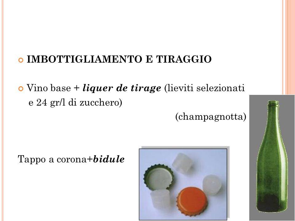 IMBOTTIGLIAMENTO E TIRAGGIO Vino base + liquer de tirage (lieviti selezionati e 24 gr/l di zucchero) (champagnotta) Tappo a corona+ bidule