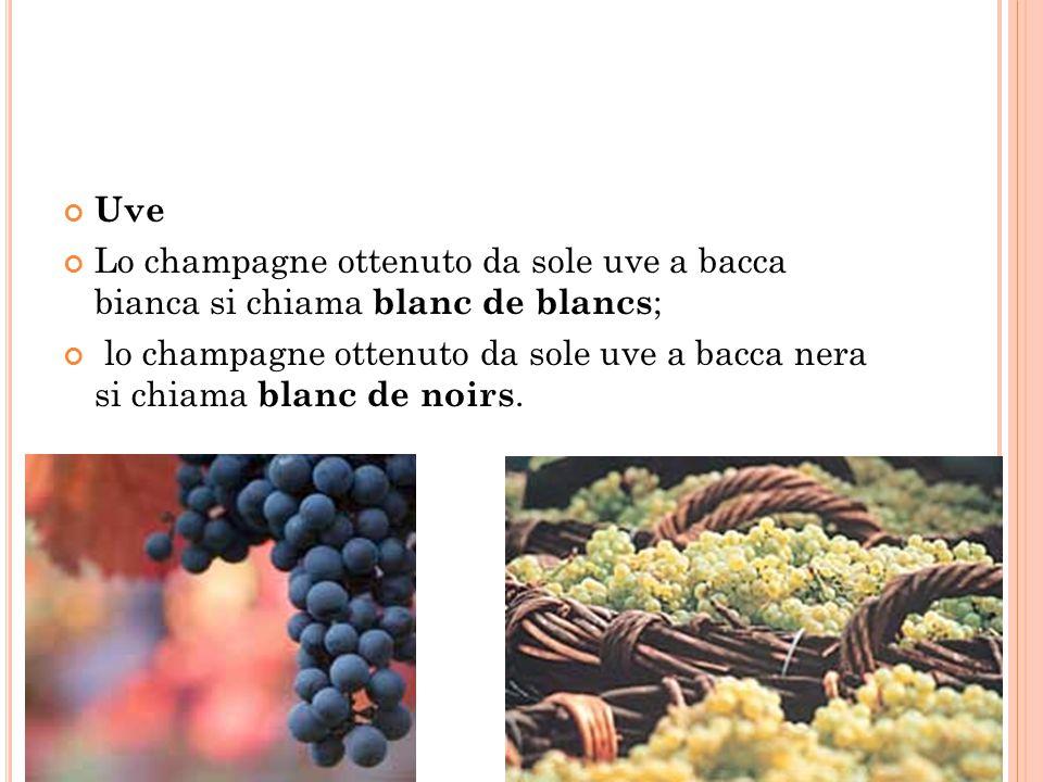 Uve Lo champagne ottenuto da sole uve a bacca bianca si chiama blanc de blancs ; lo champagne ottenuto da sole uve a bacca nera si chiama blanc de noi