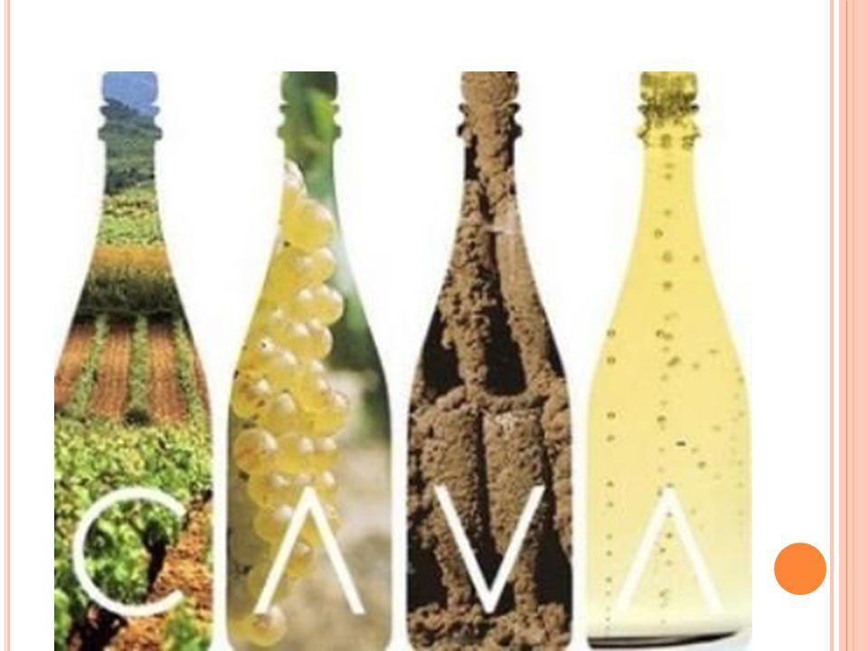 SPUMANTI ITALIANI METODO CLASSICO Franciacorta DOCG (19 comuni BS) Vitigni utilizzati : Chardonnay Pinot nero Pinot bianco