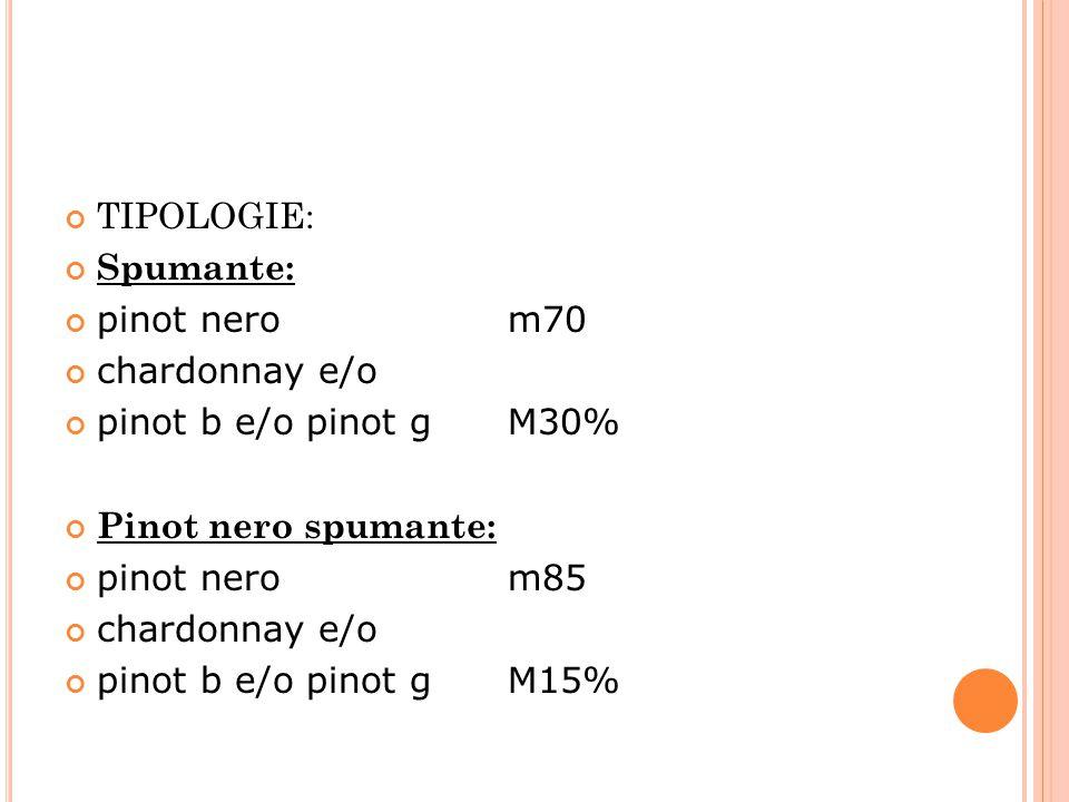 TIPOLOGIE: Spumante: pinot nero m70 chardonnay e/o pinot b e/o pinot g M30% Pinot nero spumante: pinot nero m85 chardonnay e/o pinot b e/o pinot g M15