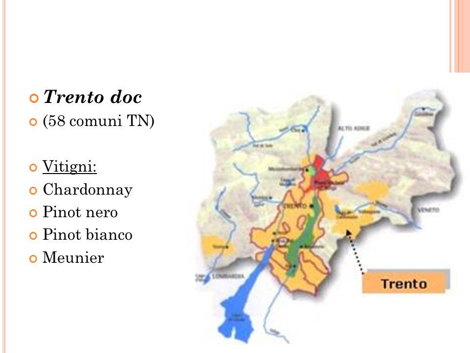 Trento doc (58 comuni TN) Vitigni: Chardonnay Pinot nero Pinot bianco Meunier
