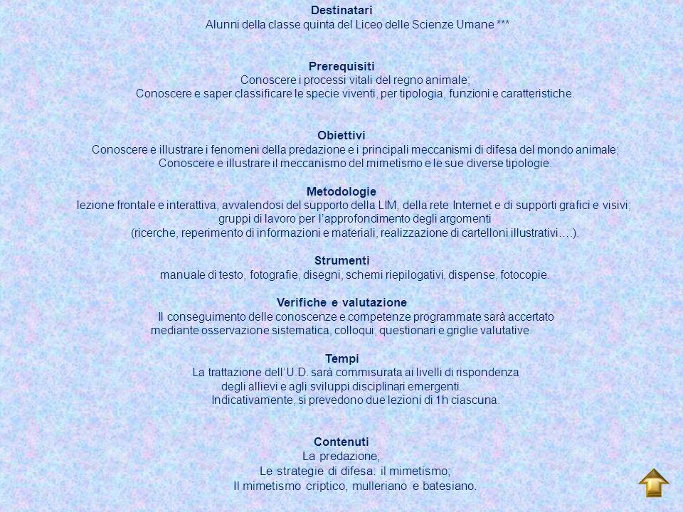 Scienze naturali - Biologia I colori della natura Dott.ssa Ombretta D'Avino Classe di concorso A050 Premessa La natura è una festa di colori: il verde dei boschi, il blu del cielo, l'azzurro del mare, i mille colori dei fiori.