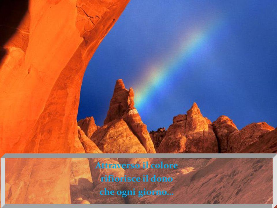L'esperienza del colore è soggettiva, è il riflesso dello stato d'animo e sulla tela è espressione del proprio mondo interiore…
