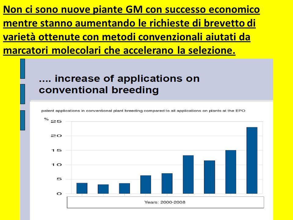 Non ci sono nuove piante GM con successo economico mentre stanno aumentando le richieste di brevetto di varietà ottenute con metodi convenzionali aiutati da marcatori molecolari che accelerano la selezione.