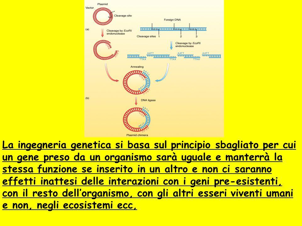 La ingegneria genetica si basa sul principio sbagliato per cui un gene preso da un organismo sarà uguale e manterrà la stessa funzione se inserito in un altro e non ci saranno effetti inattesi delle interazioni con i geni pre-esistenti, con il resto dell'organismo, con gli altri esseri viventi umani e non, negli ecosistemi ecc,
