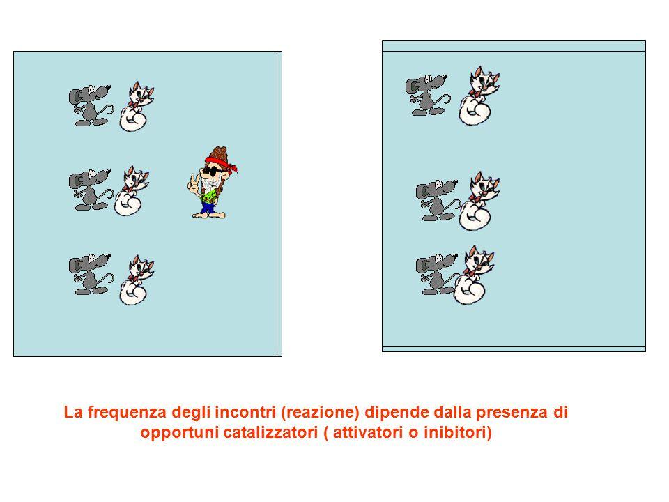 La frequenza degli incontri (reazione) dipende dalla presenza di opportuni catalizzatori ( attivatori o inibitori)