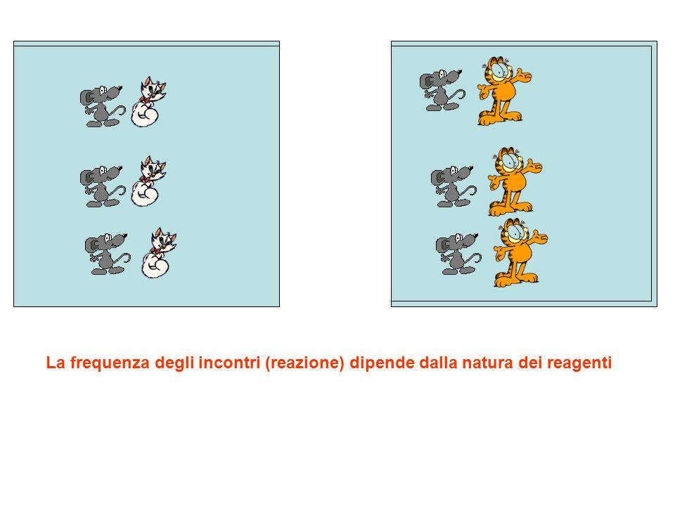 La frequenza degli incontri (reazione) dipende dalla natura dei reagenti