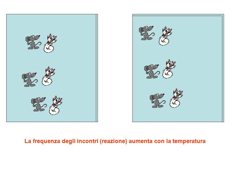 La frequenza degli incontri (reazione) aumenta con la temperatura