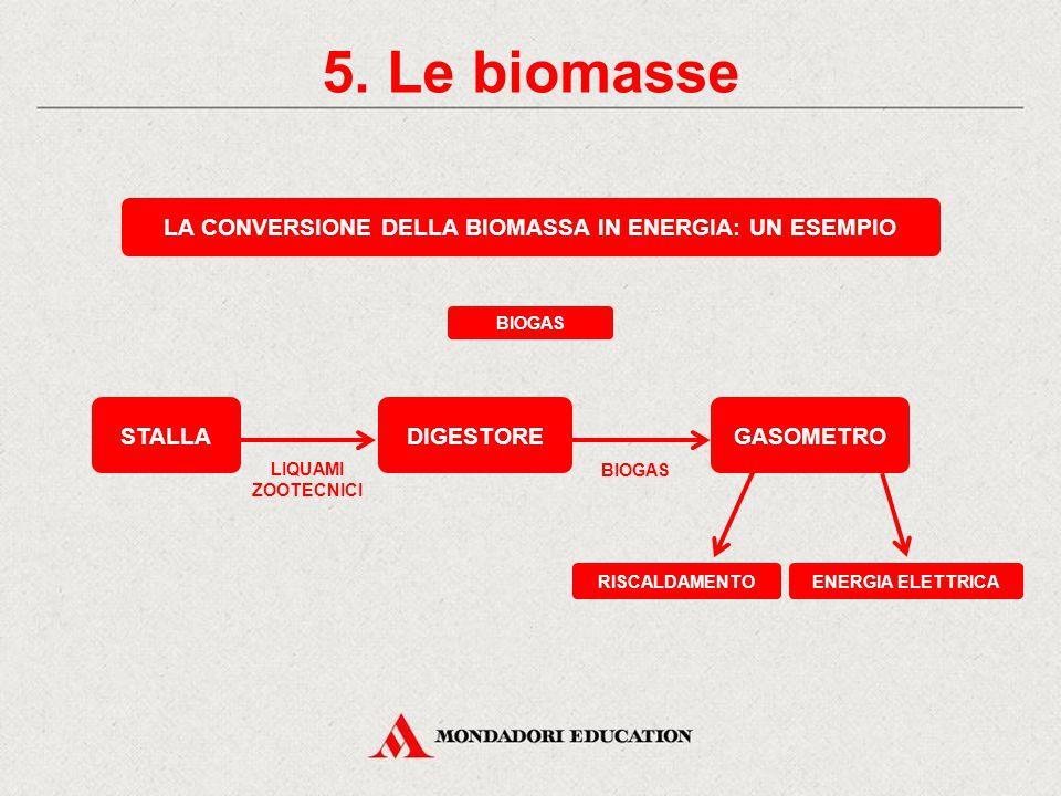 5. Le biomasse Energia chimicaEnergia termica Le biomasse sono materiali di origine animale e vegetale che non hanno subito alcun processo di fossiliz